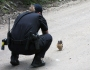 Featured Image -- 700